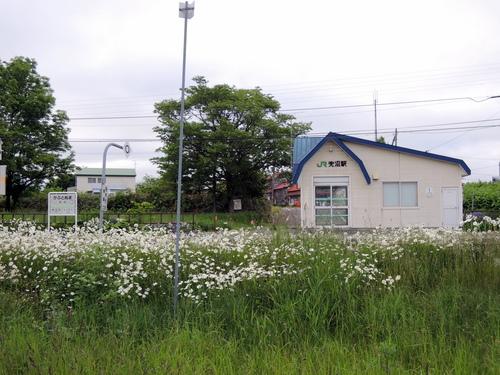 DSCN4805.JPG
