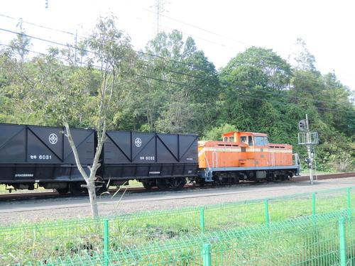 DSCN7298.JPG