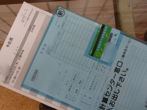 P8170022.JPG